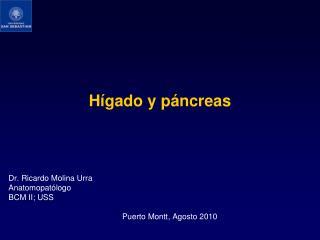 Hígado y páncreas