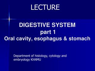 DIGESTIVE SYSTEM part 1 Oral cavity, esophagus & stomach