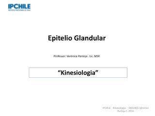 Epitelio Glandular Professor: Verónica Pantoja . Lic. MSP.