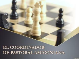 EL COORDINADOR  DE PASTORAL AMIGONIANA