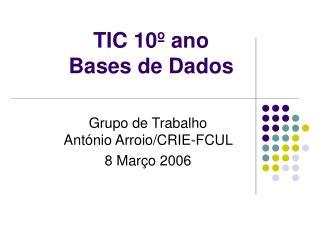 TIC 10� ano  Bases de Dados