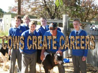 COWS CREATE CAREERS