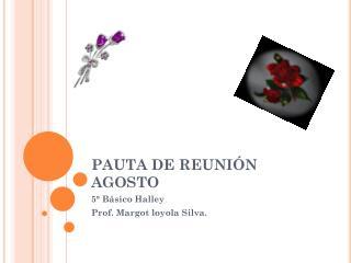 PAUTA DE REUNIÓN AGOSTO