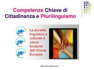 Competenze  Chiave di Cittadinanza e  Plurilinguismo