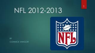 NFL 2012-2013