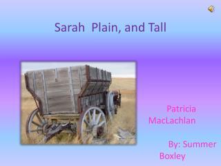 Sarah  Plain, and Tall