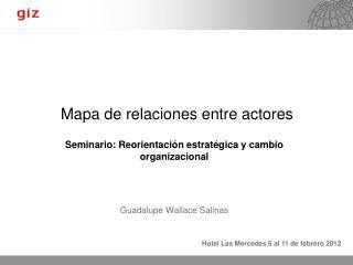 Mapa de relaciones entre actores