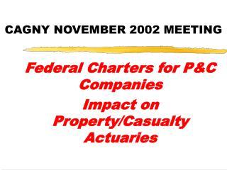 CAGNY NOVEMBER 2002 MEETING