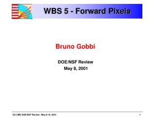 WBS 5 - Forward Pixels