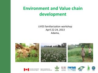 Environment and Value chain development