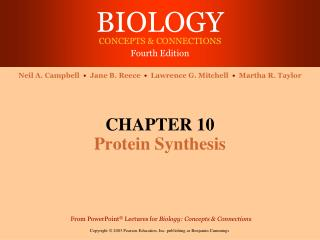 CHAPTER 10 Protein Synthesis