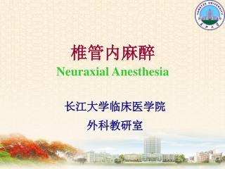 椎管内麻醉 Neuraxial Anesthesia