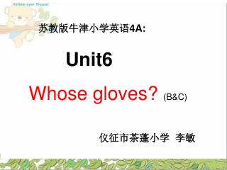 Unit6  Whose gloves?  (B&C)