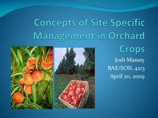 Concepts of Site Specific Management in Orchard Crops
