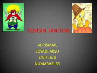TENİSİN TANITIMI