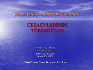 2004 YILINDA ANKARA'DA TARANAN  CEZAEVLERİNDE  TÜBERKÜLOZ