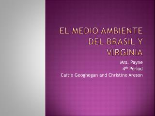 El Medio Ambiente del Brasil y Virginia