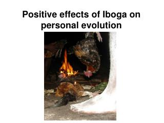 Positive effects of Iboga on personal evolution