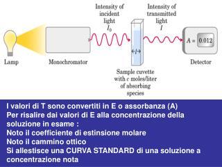 I valori di T sono convertiti in E o assorbanza (A)