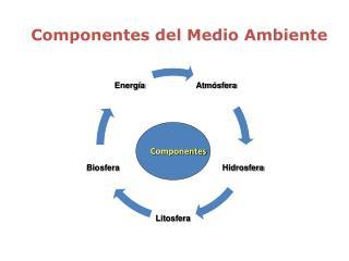 Componentes del Medio Ambiente