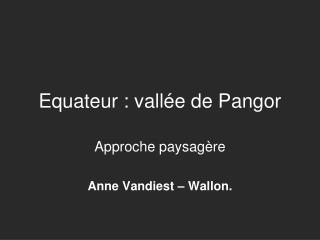 Equateur : vallée de Pangor