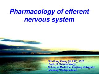 Pharmacology of efferent nervous system