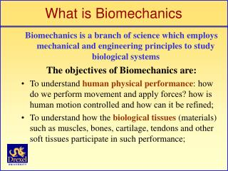 What is Biomechanics