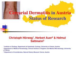 Cercarial Dermatitis  in  Austria     Status of Research