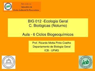 BIG 012 -Ecologia Geral C. Biol�gicas (Noturno) Aula - 6 Ciclos Biogeoqu�micos