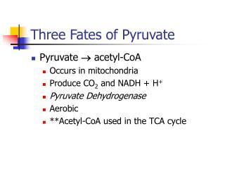 Three Fates of Pyruvate