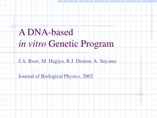 A DNA-based  in vitro  Genetic Program
