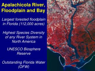 Apalachicola River, Floodplain and Bay