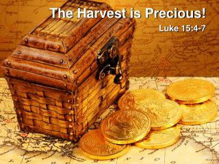 The Harvest is Precious!