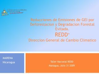 Taller Nacional REDD Managua, Julio 31 2009