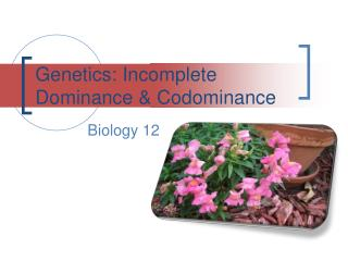 Genetics: Incomplete Dominance & Codominance