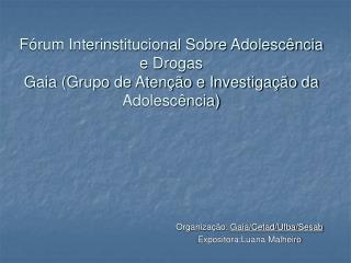Organização:  Gaia/Cetad/Ufba/Sesab Expositora:Luana Malheiro