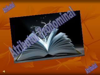 Atributul Pronominal