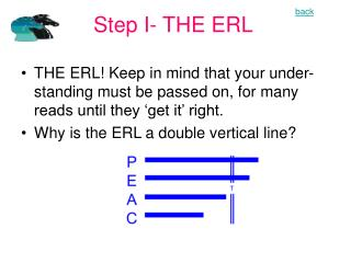 Step I- THE ERL
