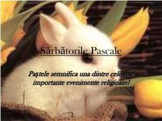 Sărbătorile Pascale
