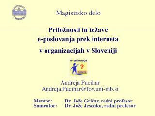 Priložnosti in težave  e-poslovanja prek interneta  v organizacijah v Sloveniji