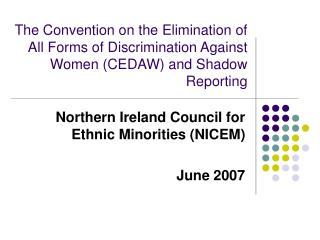 Northern Ireland Council for Ethnic Minorities (NICEM) June 2007