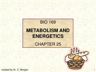 BIO 169 METABOLISM AND ENERGETICS CHAPTER 25