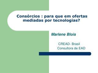 Consórcios : para que em ofertas mediadas por tecnologias?