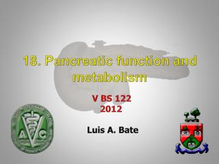 18. Pancreatic function and metabolism