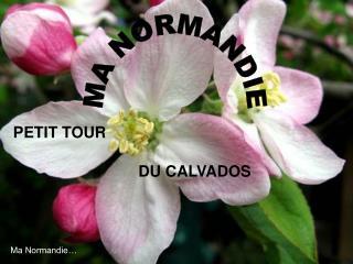 PETIT TOUR