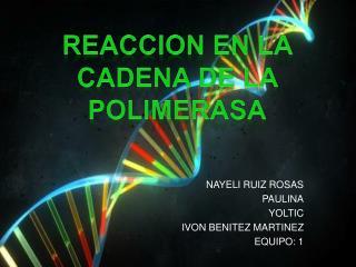 NAYELI RUIZ ROSAS  PAULINA YOLTIC IVON BENITEZ MARTINEZ EQUIPO: 1