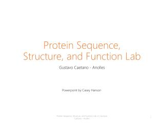 Protein Sequence, Structure, and Functio n Lab