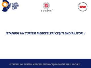 Ana  hedef  grupları ise: İstanbul'a  yönelik turizm faaliyetleri yürüten seyahat  acentaları ,