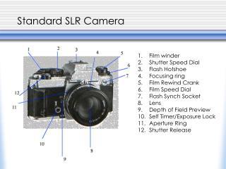 Standard SLR Camera