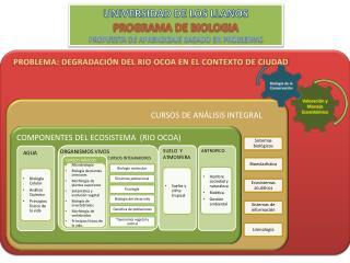 COMPONENTES DEL ECOSISTEMA  (RIO OCOA)